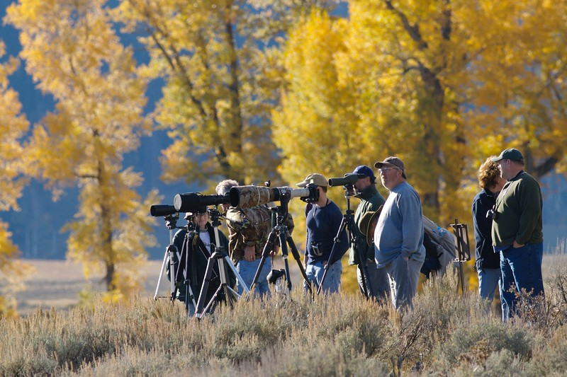 Long lenses are de rigeur at Yellowstone [September; Yellowstone National Park, Wyoming]