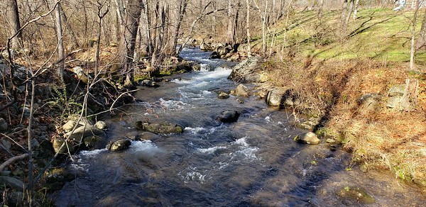 SOLD: 145 Wooded Acres on Overstreet Creek