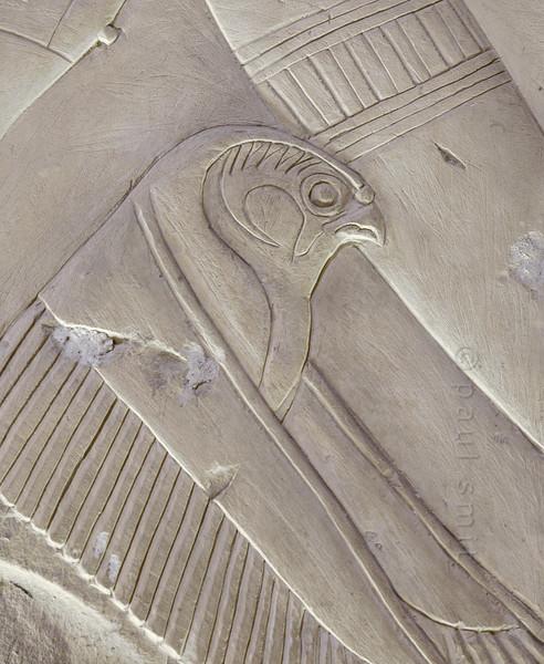 [Egypt 29962] 'Falcon in Ptah-Sokar Chapel at Abydos.'