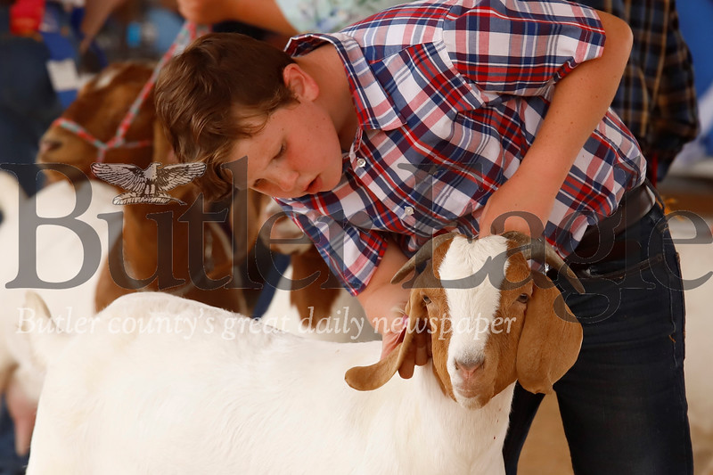 Whitaker Schwalm inspects one of his goats during competion Monday at the 2019 Farm Show. 08/05/19 Seb Foltz/Butler Eagle