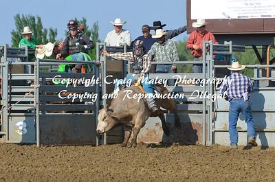 Bulls 05-26-14