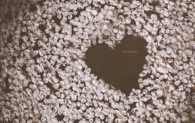 heartshape.png