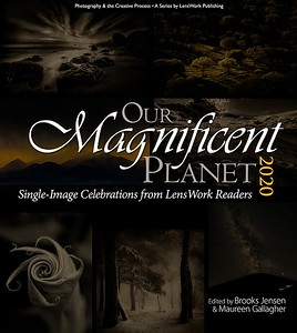 Our Magnificent Planet 2020