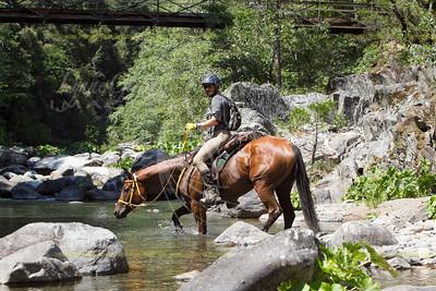 Swinging Bridge - Mile 50 - 2013