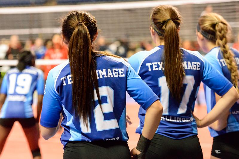 2015-01-18 Texas Image 014.jpg