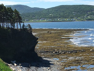 Newfoundland 2012