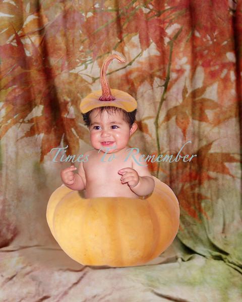 Pampkin in a Fall copy.jpg