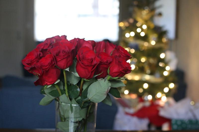 2019-12-22_ChristmasDecor-4425.JPG