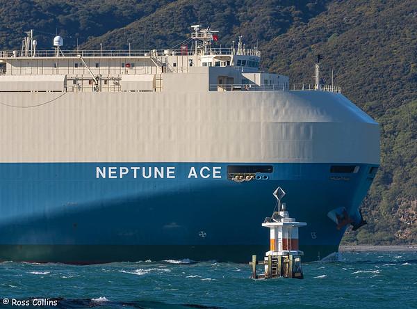 'Neptune Ace'