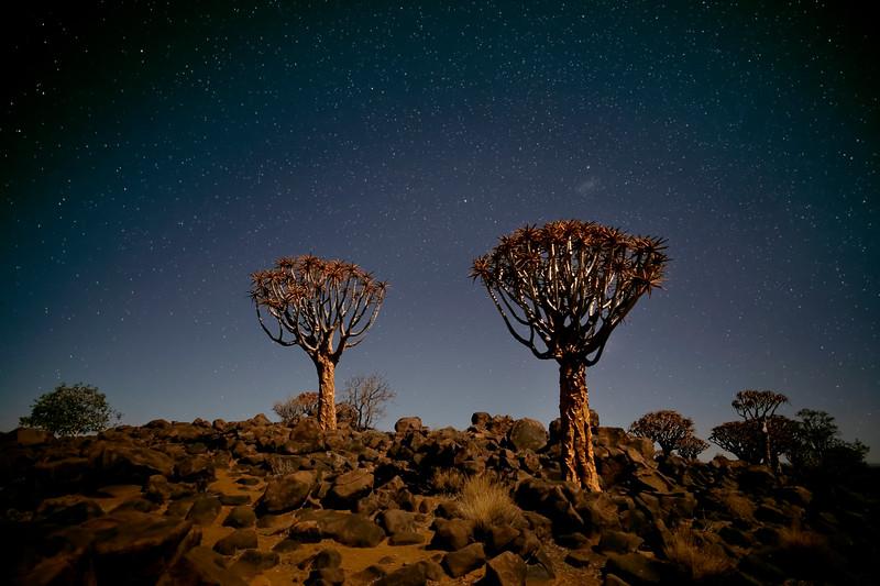Namibia 69A3705.jpg