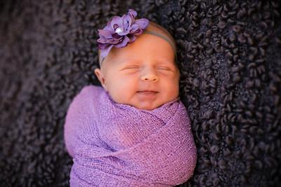 Tessa ~ Newborn