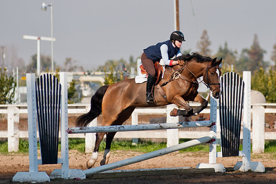 Equestrian Portfolio
