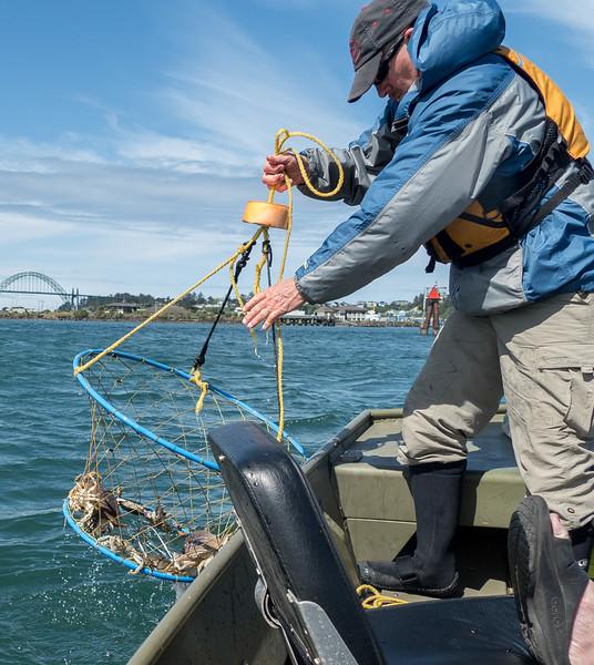 Crabbing (20 of 23).jpg