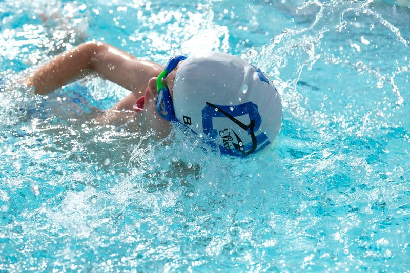 CV swim v Kennett 2019