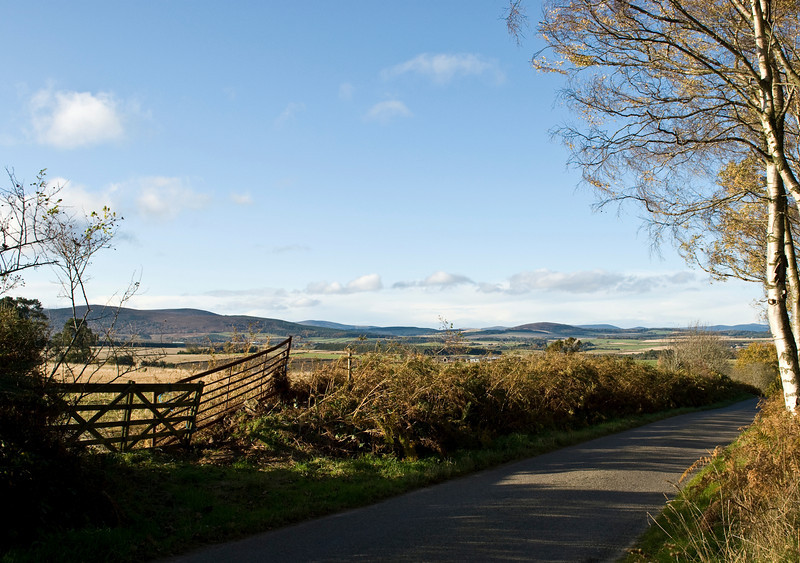 Country lane at Drum Castle, Aberdeenshire