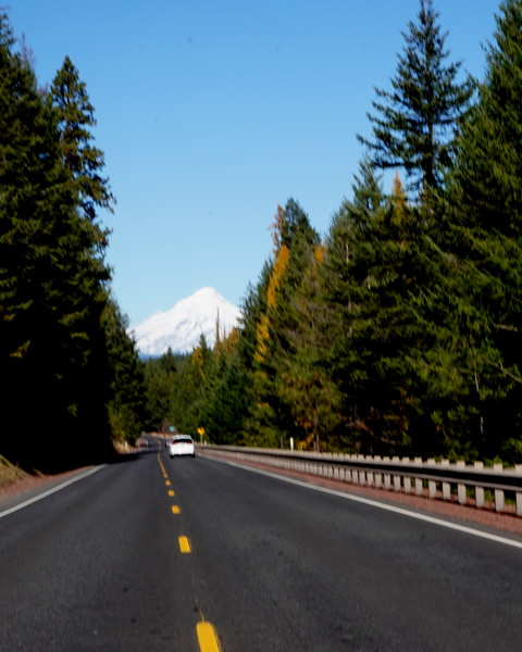 Road to Columbia River Gorge 5.JPG