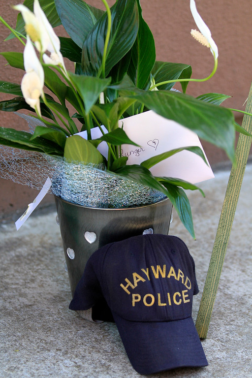 . Tracy Ardito, of Hayward, brought a plant with a Hayward police hat that she had found by her home this morning to place outside the Hayward Police Department  in Hayward, Calif., on Wednesday, July 22, 2015.  Ardito said she was praying for the family and friends of fallen Sgt. Scott Lunger and felt her prayers were being heard when she found the hat. She said she lives four blocks from where Lunger was shot early Wednesday morning. (Laura A. Oda/Bay Area News Group)