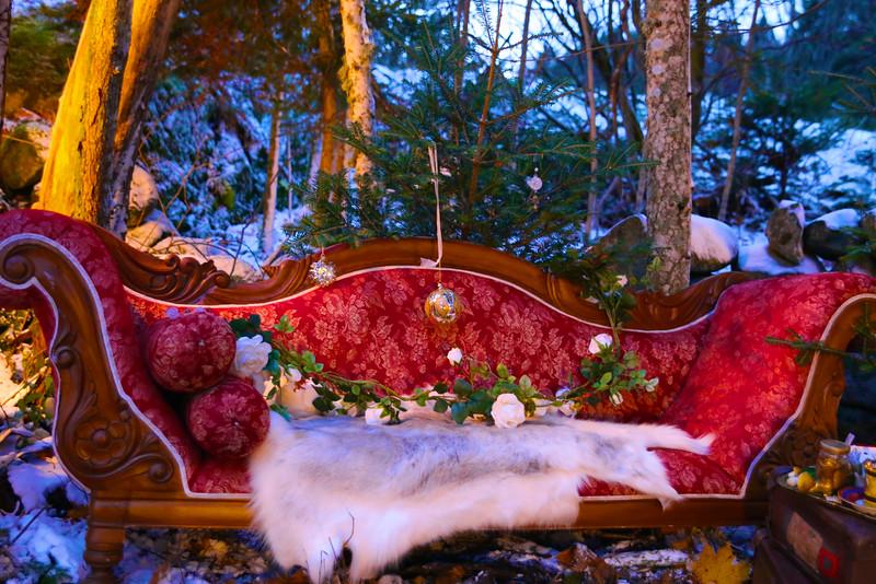 Christmas Wonderland Dream