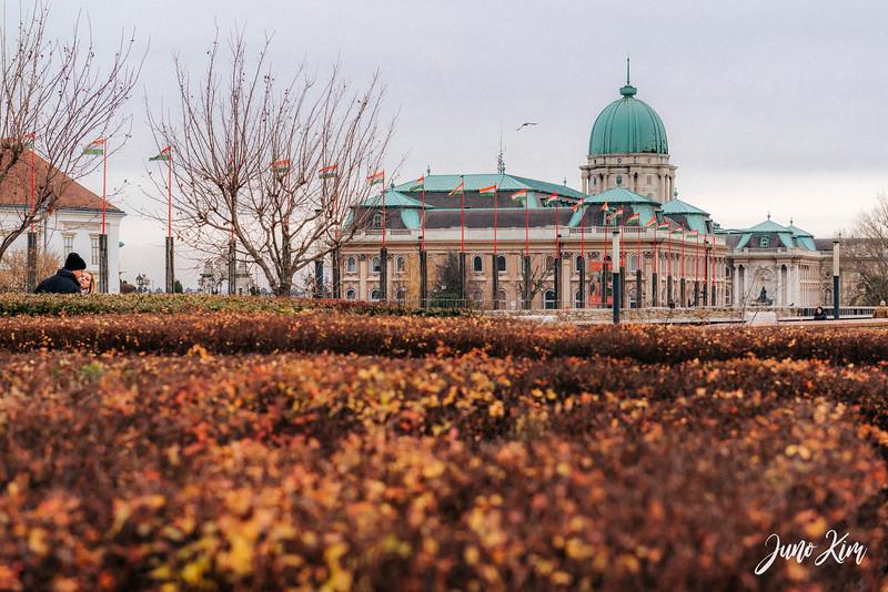 2016.12_Budapest__6101361-Juno Kim.jpg
