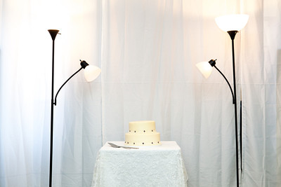 Marty and Elizabeth Wedding - Reception