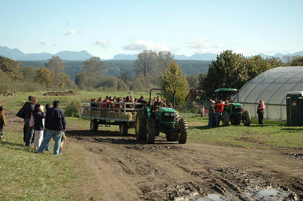 2008 - Pumpkin Patch - Jubilee Farms - 10/11