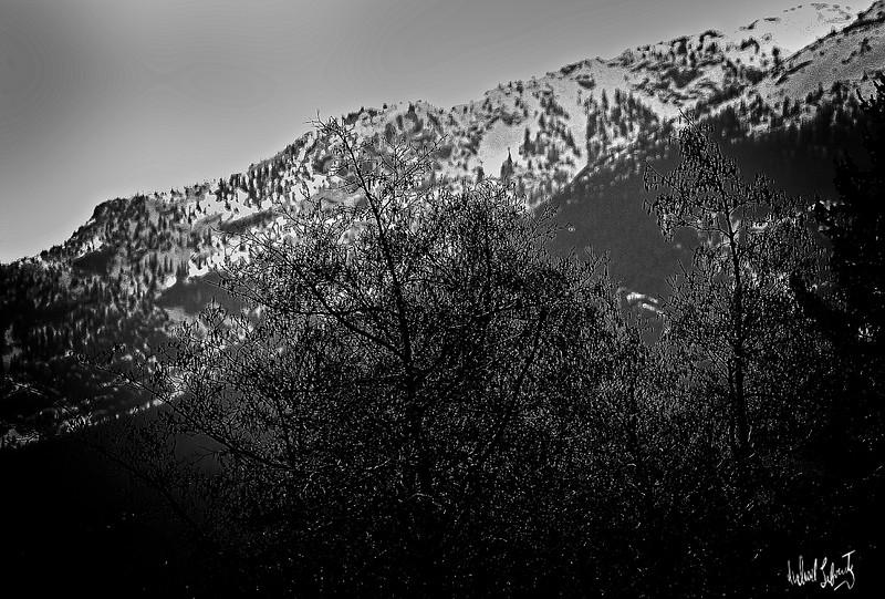 cold mountain2019 copy