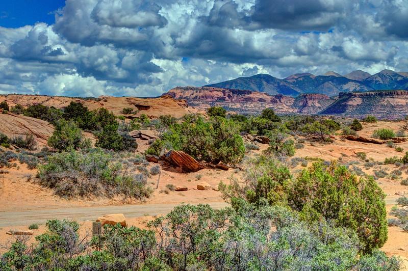 Slickrock-area-Moah-Utah-Beechnut2-Photos-rjduff.jpg