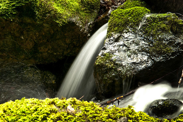 Mt. Tamalpais Waterfalls