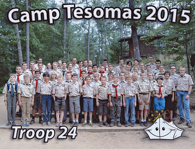 2015  Tesomas
