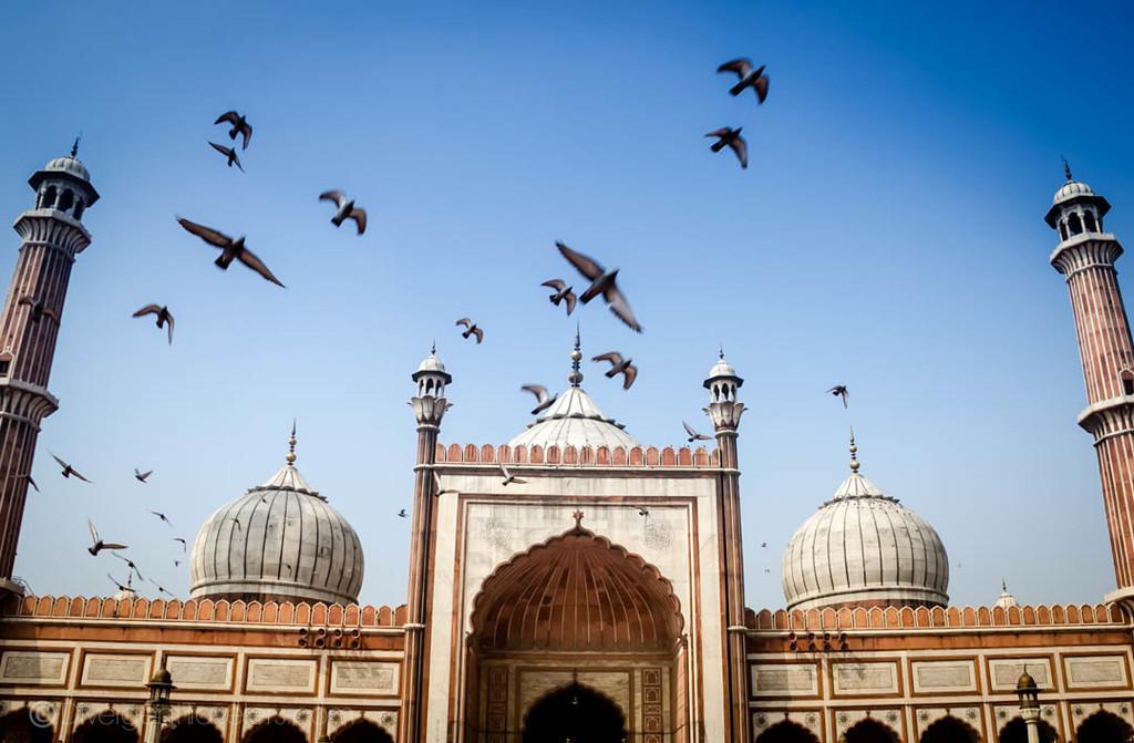 India Photos Delhi Jama Masjid
