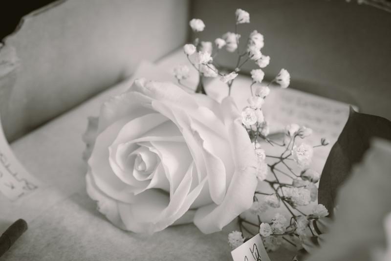 Herman Wedding-10.jpg