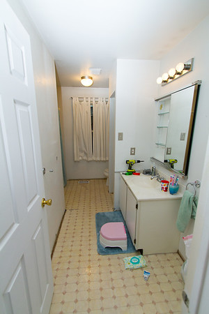 Bathroom Renovation Apr 2014