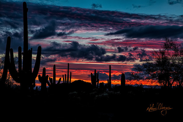 Sonoran Desert Sunrise - Sunset