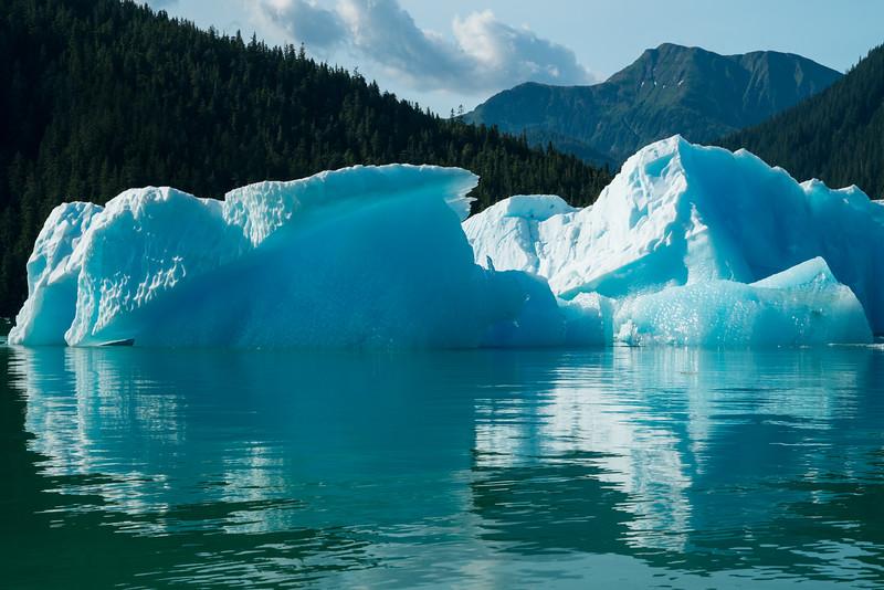 Petersberg Alaska 2019-39.jpg