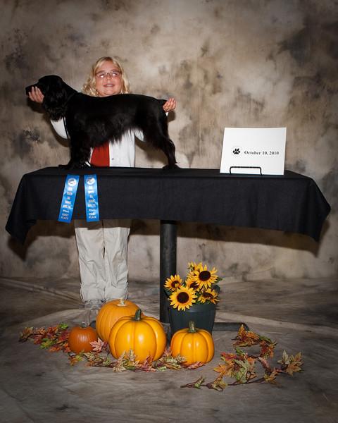 UKC Dog show 10-10-10