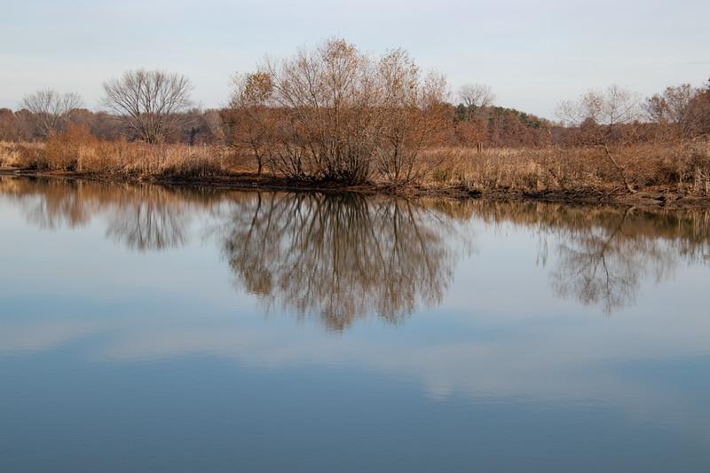 reflections 111819.jpg