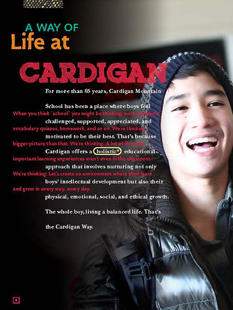Cardigan Viewbook