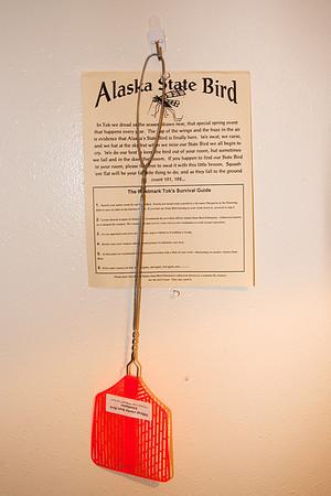Tok Alaska - June 2009