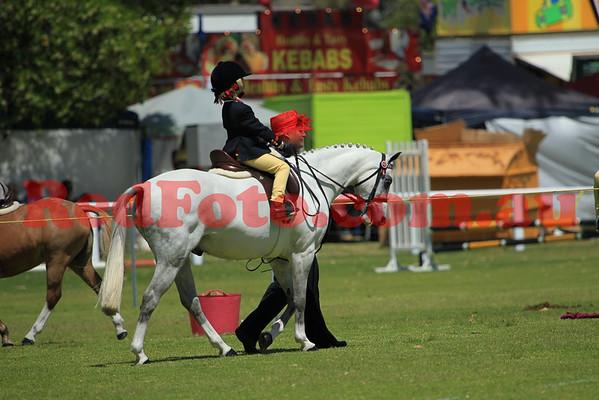 2012 11 24 Wanneroo Ag Show Breeds-Ridden till 2pm