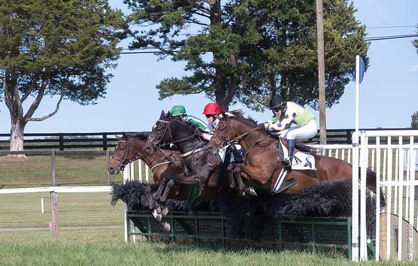 Fall 2020 Foxfield Races