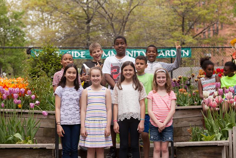 Tulip Garden Favorite may2015-6972.jpg