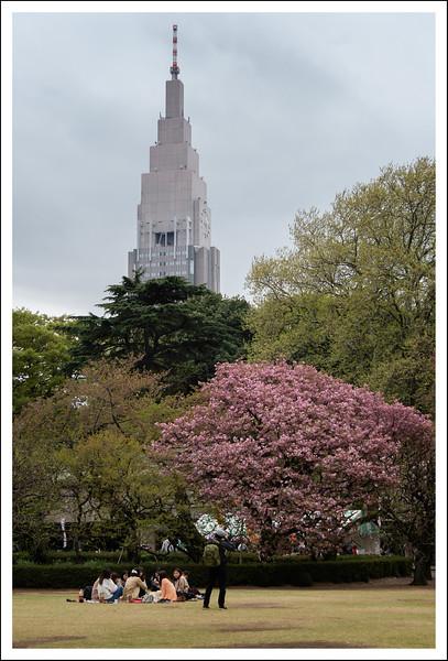 Shinjuku Gyoen-4179.jpg