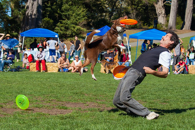 San Francisco Pets Pride Day 2012