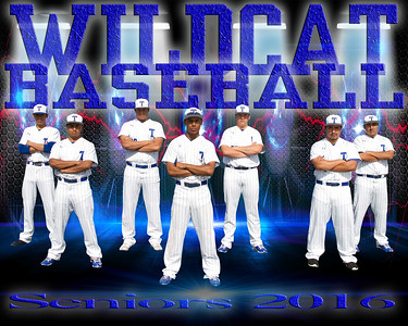 Wildcat Photography 2016-2017
