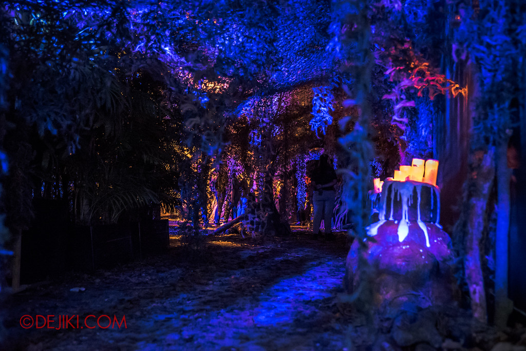 Halloween Horror Nights 7 Review - HEX forest