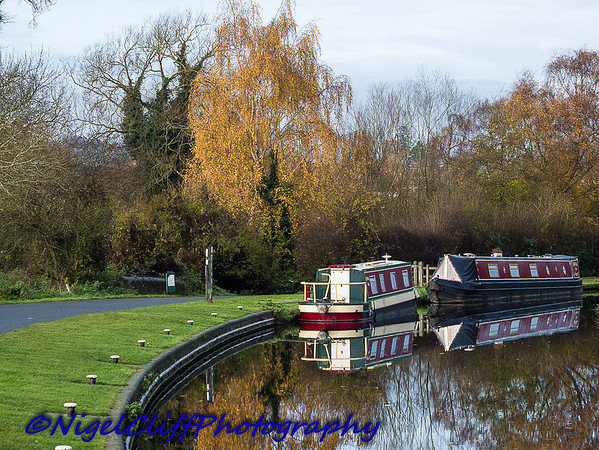 Kinver Canal (19.11.2017)