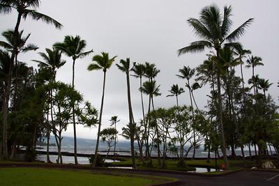 Hawaii 2016 & NYE