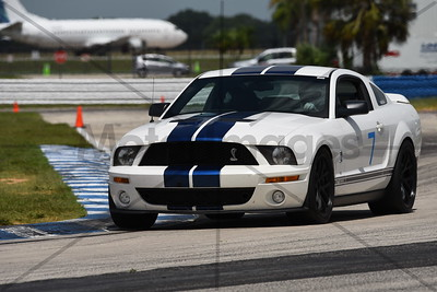 7 SHELBY
