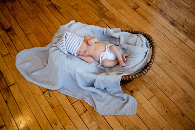 Harlan Newborn 2018