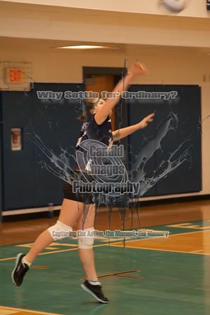 JV Volleyball 14Jan14
